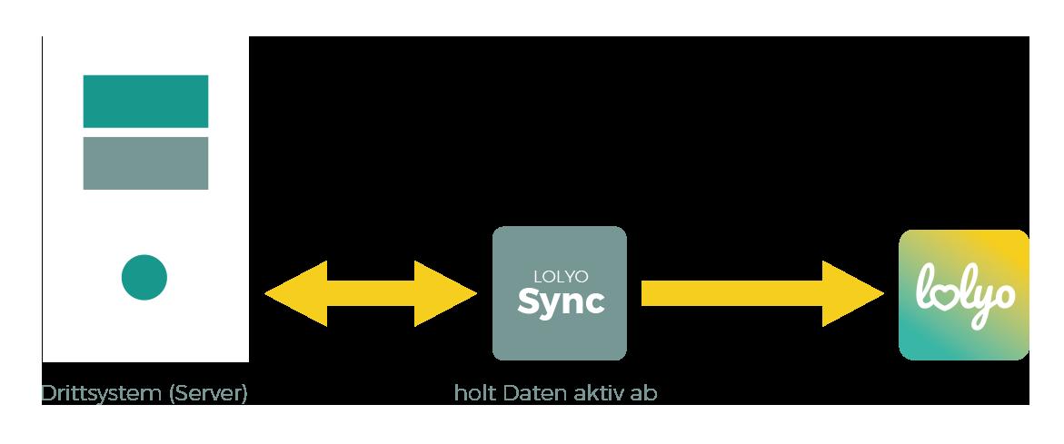 Anbindung über Aktive LOLYO Sync Schnittstelle